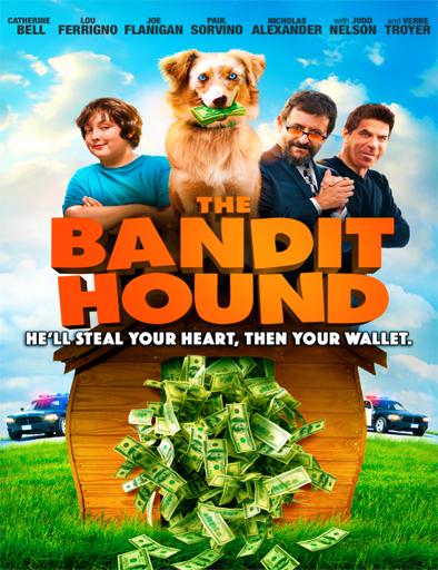 Ver The Bandit Hound (2016) Online