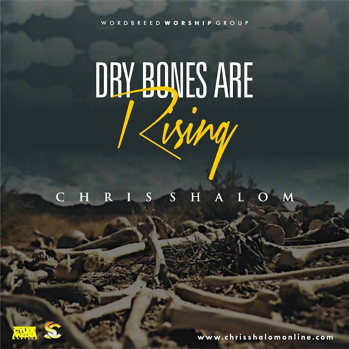 NEW MUSIC: CHRIS SHALOM - DRY BONES ARE RISING @shalom_chris
