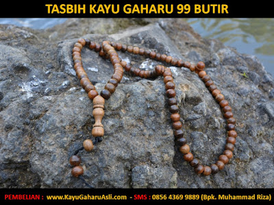 khasiat kayu gaharu Kalimantan