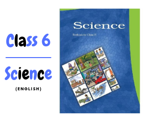 NCERT Class 6 English Solutions and Textbook - Bookie Baba
