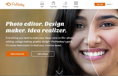 picmonkey editor