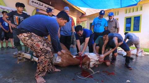 Erwin Yunaz menyembelih hewan kurban
