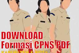 Download Pengumuman Formasi CPNS PDF Kabupaten dan Kota Kepulauan Bangka Belitung 2018