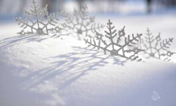 Besplatne zimske pozadine za računar - Les Flocons
