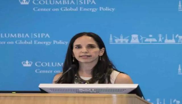 Quién es Luisa Palacios, la primera mujer en presidir Citgo