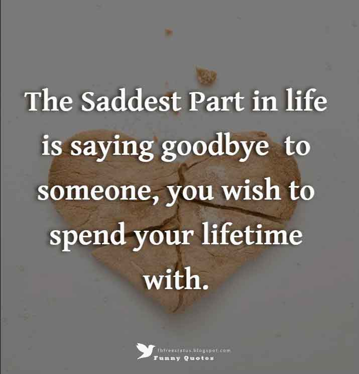 The Saddest Part in life is saying goodbye  to someone, you wish to spend your lifetime with.