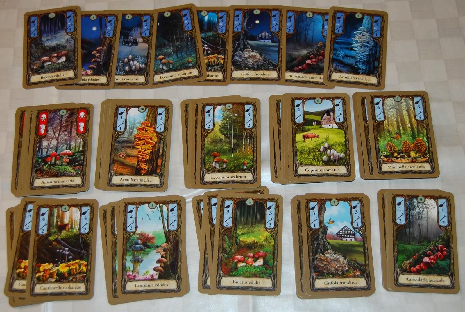 Diferentes cartas de setas, de día y de noche