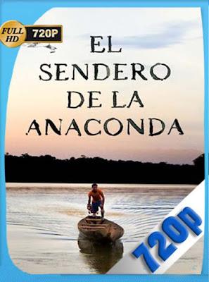 El sendero de la anaconda (2019) HD[720P] latino[GoogleDrive] DizonHD