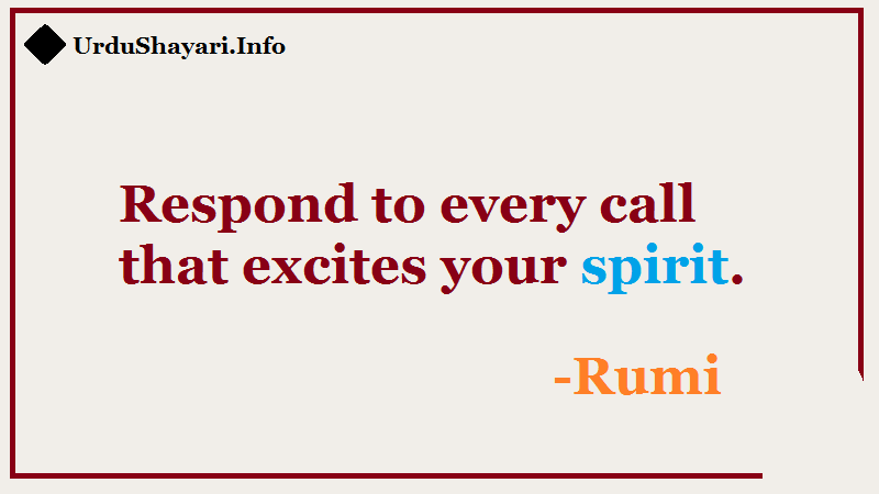 Sufi quotes - Respond to every call that excite your sprit