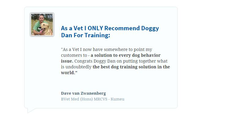 top dog training tips,best dog training tips,dog training videos