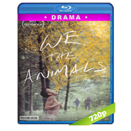 We the Animals (2018) BRRip 720p Audio Dual Latino-Ingles