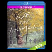 We the Animals (2018) BRRip 720p Audio Dual Latino-Ingles
