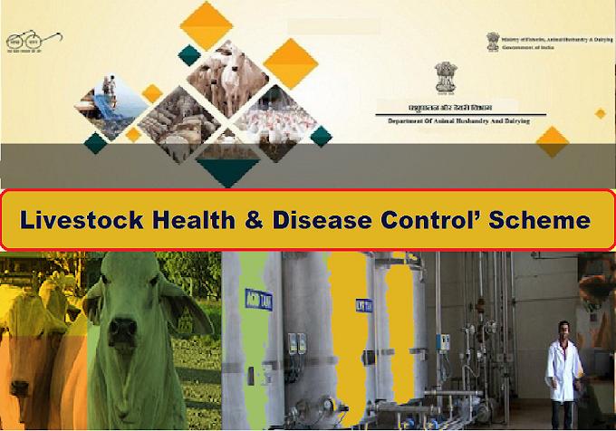 PM Livestock Disease Control Scheme 2019