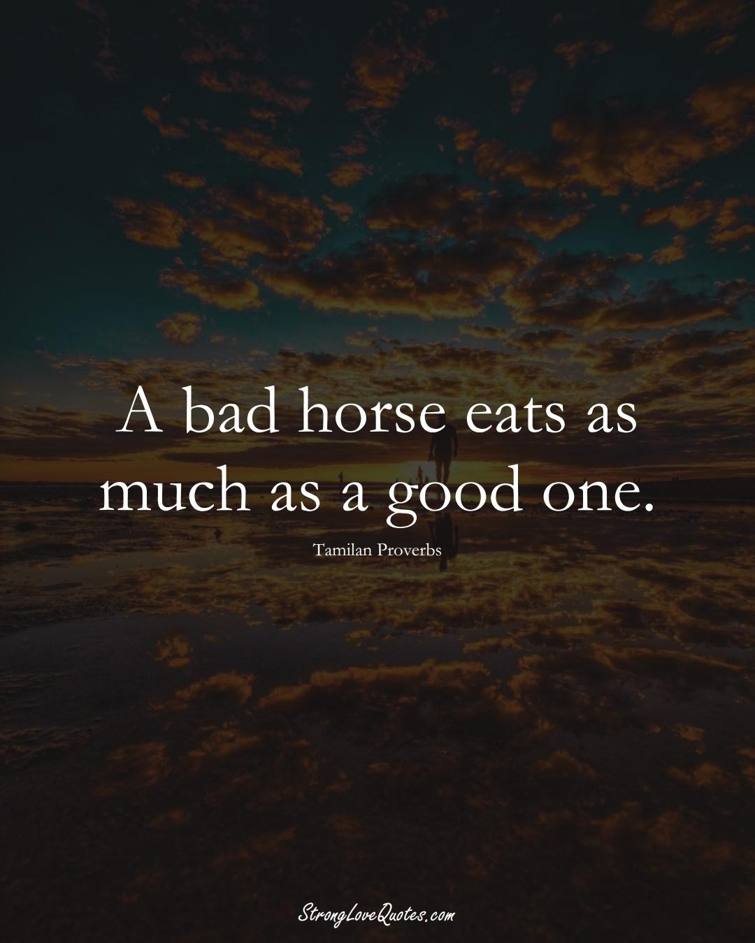 A bad horse eats as much as a good one. (Tamilan Sayings);  #aVarietyofCulturesSayings