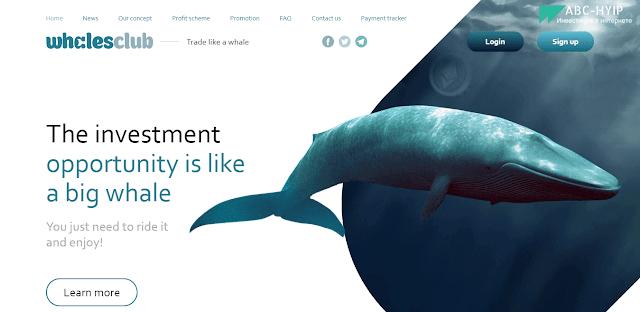 Whales Club - отзывы и обзор инвестиционного проекта whalesclub io. Бонус 4%