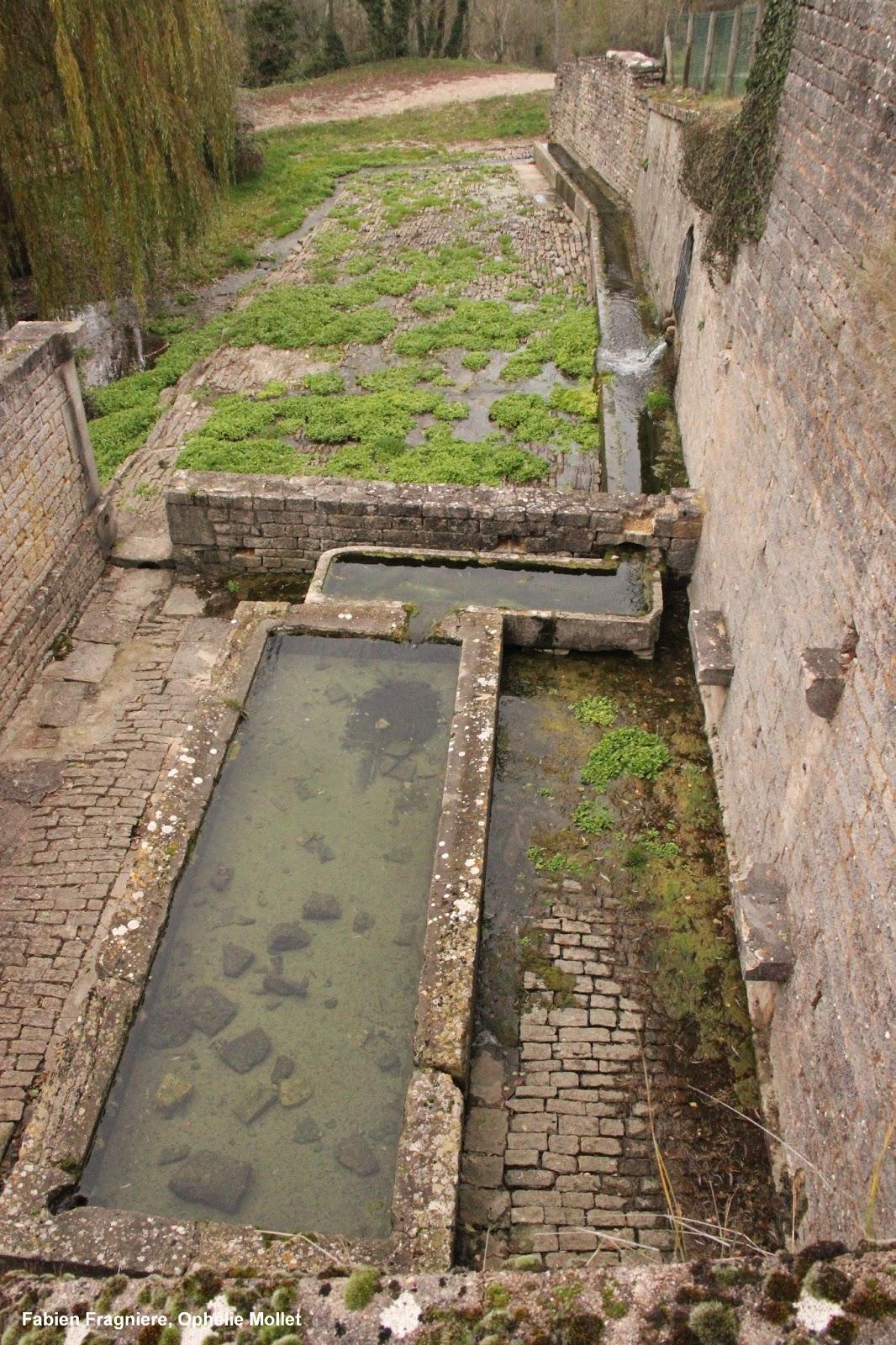 haute marne une terre inconnue fontaine gallo romaine. Black Bedroom Furniture Sets. Home Design Ideas