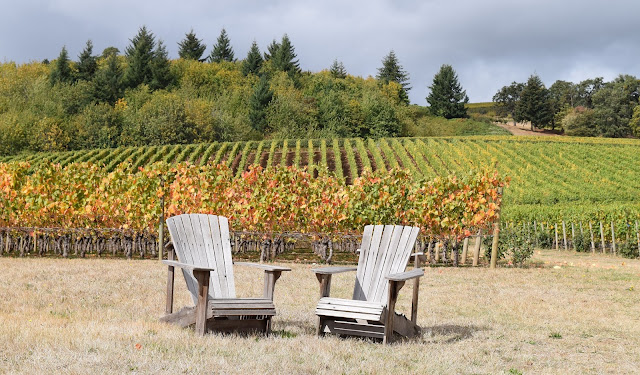 Cristom Vineyards, Willamette Valley
