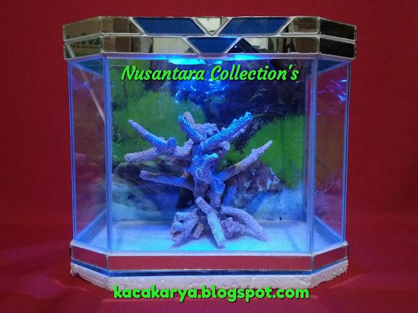 Contoh Model Aquarium Kaca Karya Nusantara Collections Kaca Karya