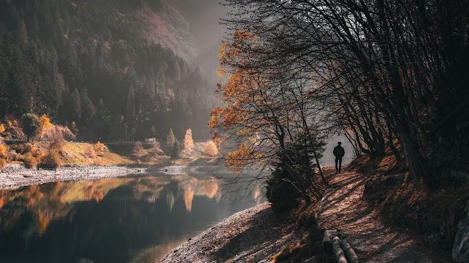 Papel de Parede Natureza Outono Homem Sozinho