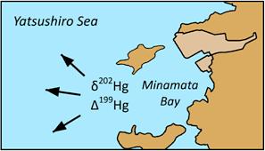 Minamata (Minamata disease)