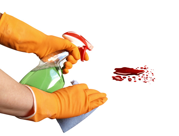 die blood cleaning service