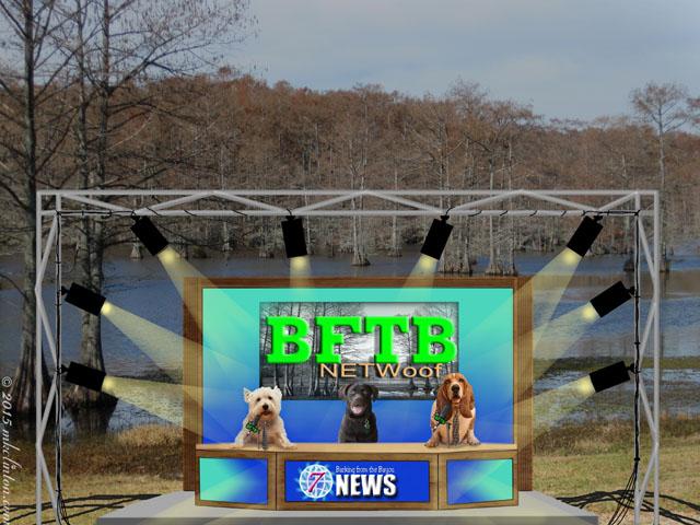 BFTB NETWoof News set