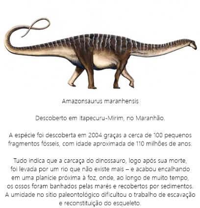 Dinossauro-Amazonsaurus-Maranhensis