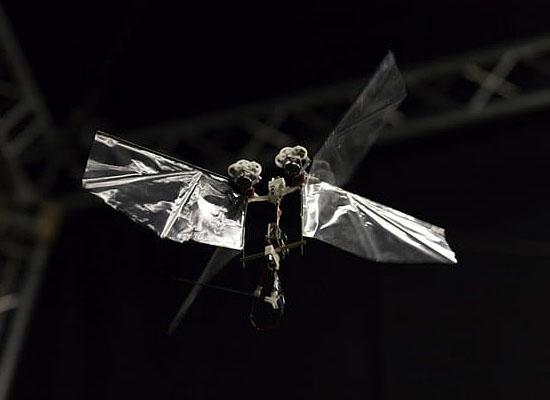 Invenção de mosca robótica que voa de verdade surpreende especialistas - Img