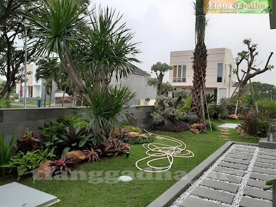area yang cocok untuk taman di rumah