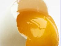 Bahaya yang di timbulkan jika makan telur mentah