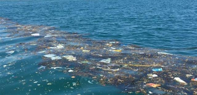 تعرف على مصادر تلوث الأوساط المائية والمحافظة على سلامة هذه الأوساط - الأمراض الناتجة عن تلوث المياه والوقاية منها