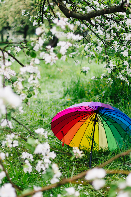 Tree in full flower with a colorful umbrella sitting on the ground under it.