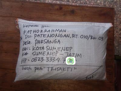Benih pesanan FATHORRAHMAN Sumenep, Jatim.   (Sesudah Packing)