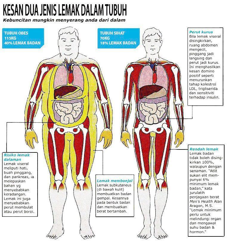 Tips kurangkan lemak dalam badan