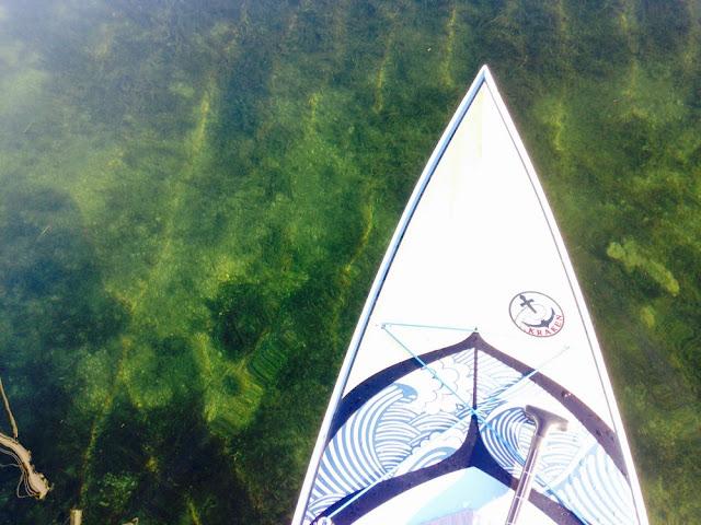 Paddle boarding in Tarpon Basin Key Largo