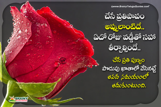 The Best Meaning of Life in Telugu-do's and donot's in life