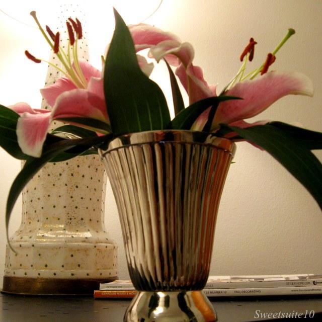 My New Silver Vase