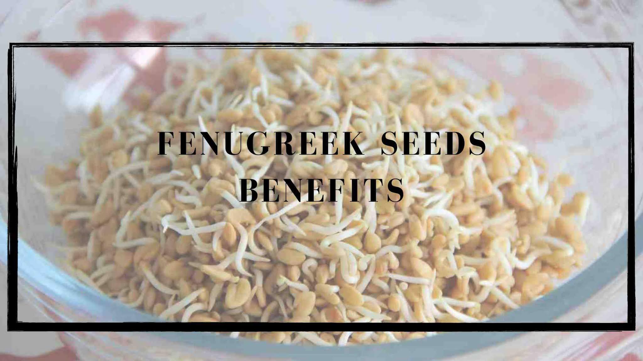 fenugreek-seeds-in-Hindi