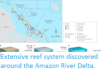 http://sciencythoughts.blogspot.co.uk/2016/05/extensive-reef-system-discovered-around.html