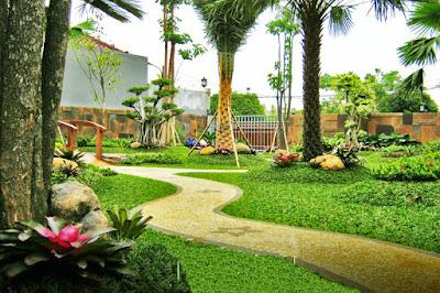 Tukang Taman Jakarta Barat 0812 1404 5463