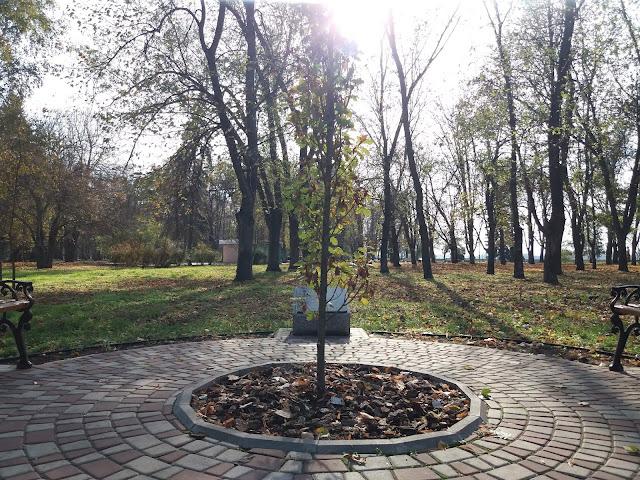 Катинський дуб (Кременчук) © Oleh Kushch, CC-BY-SA-4.0