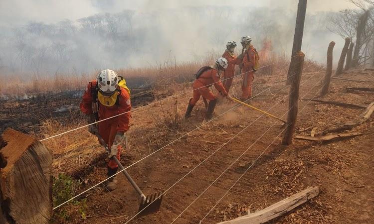 Quinze cidades do interior da BA seguem com focos de incêndio, diz Corpo de Bombeiros