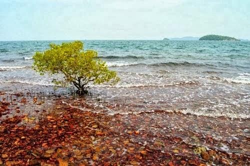 Discovery Bà Lụa Archipelago 2