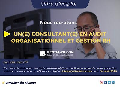 Un(e) Consultant(e) en Audit