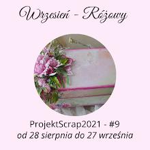 Projekt Scrap 2021
