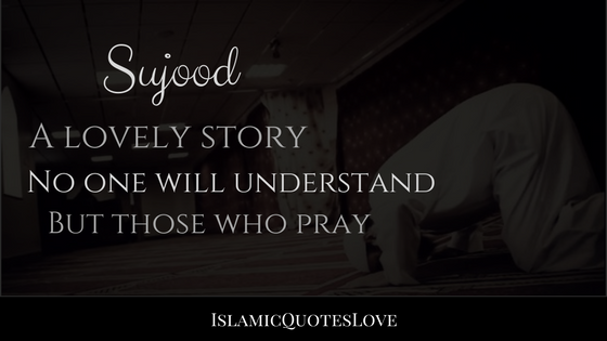 Sujood A lovely story No one will understand,  but those who pray.