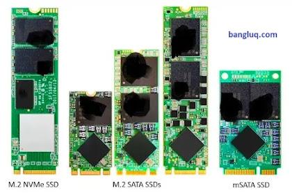 5 Jenis Antarmuka SSD dan Penjelasan Mendetil  Soket M.2