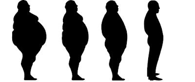 lose 8 kg in 8 weeks (Yes, it's real)