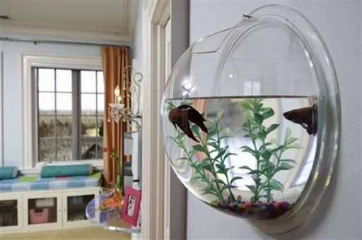 32+ Rak Aquarium Minimalis, Paling Top!