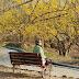 韓國玩樂|全羅南道《求禮山茱萸花慶典》,3月春季純樸鄉郊賞花遊